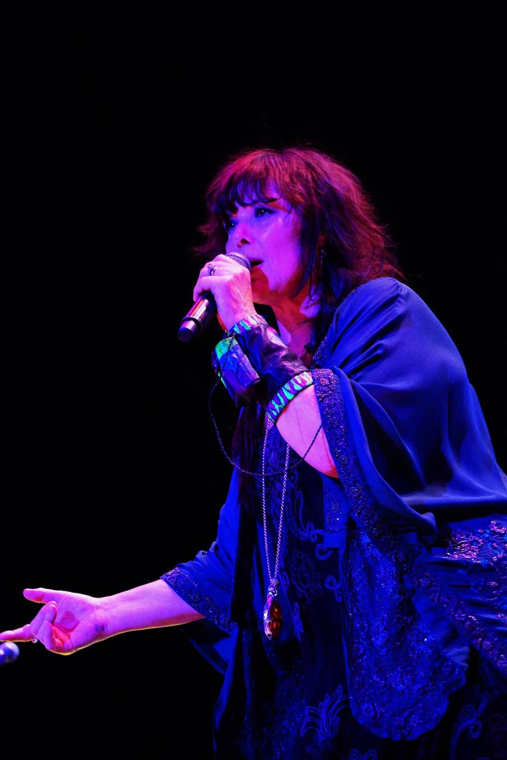 Ann Wilson on Fire