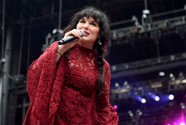 ann wilson in red