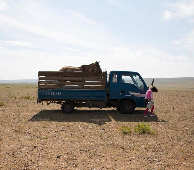 This one time I hung out in the Mongolian steppe with this rad nine year old while she prepared for a 25 kilometre horse race. Here little Bujinlkham packs up her horse in the family truck on the morning of the race. @aljazeera #mongolia #dundgovi #naadam