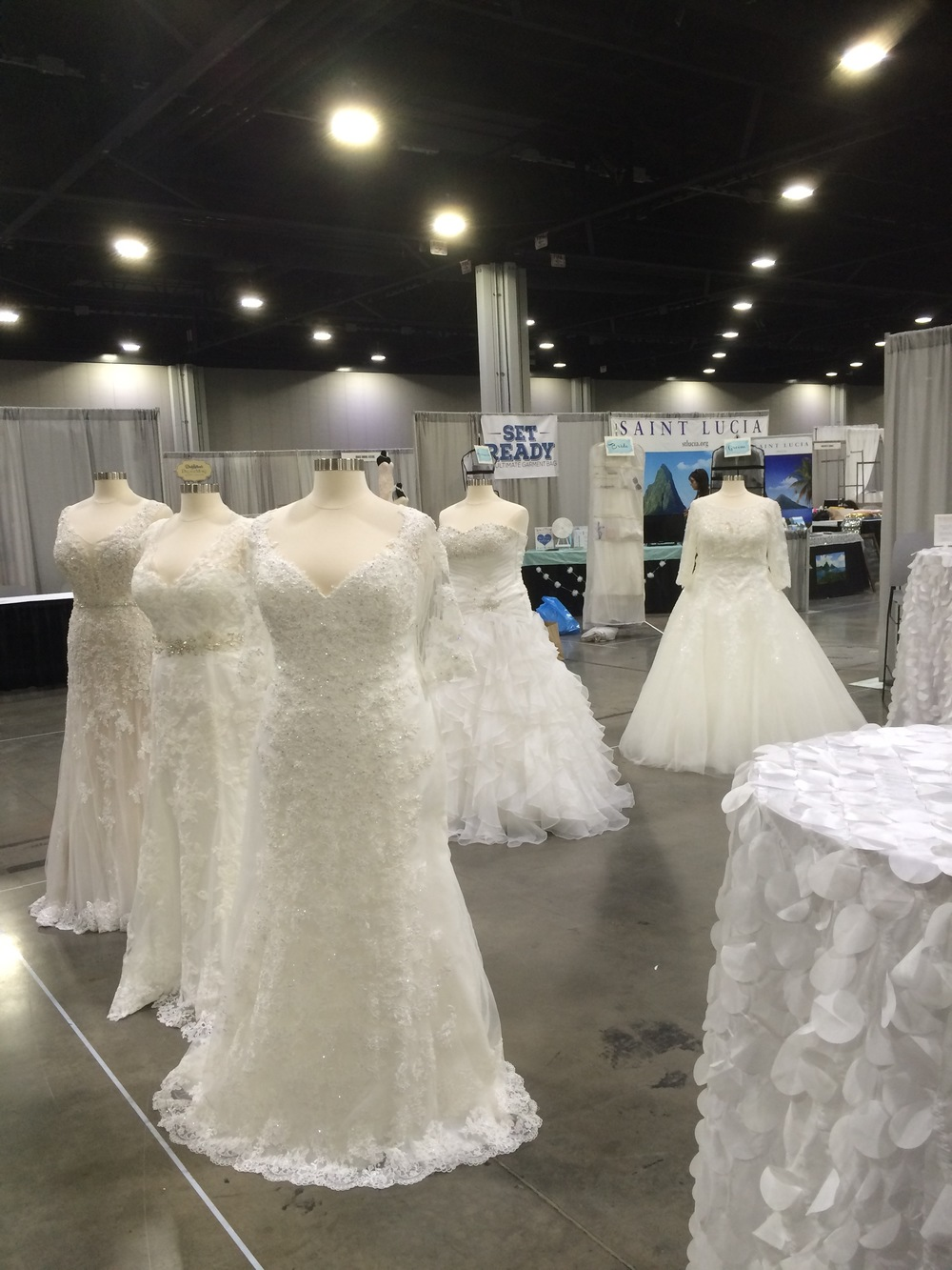 Curvy Rose | plus size bridal store | Atlanta, GA | David Tutera