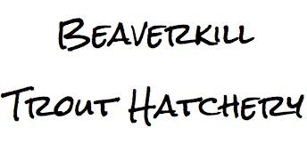 Beaverkill.jpg
