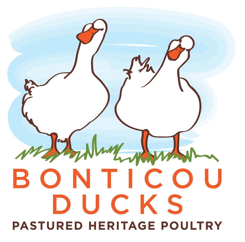 Bonticou-Logo-WEB.jpg