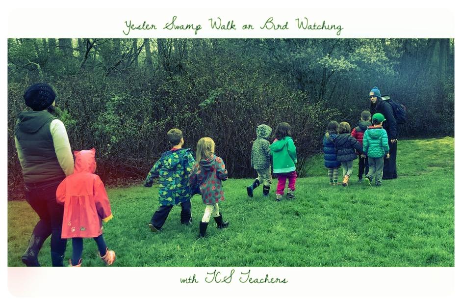 Yesler Swamp Walk or Bird Watching