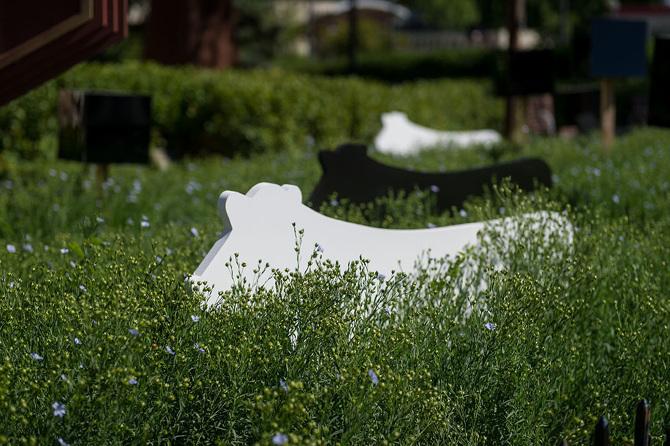 4. 2 Degrees by LADR Landscape Architects (Bev Windjack, Renée Lussier, Chris Windjack)
