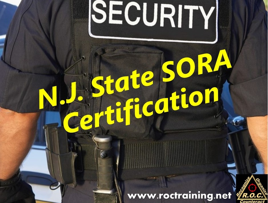 SORA Certification (4 Days, Night Class) — R.O.C. Training