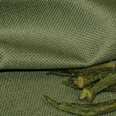Columbia Moss