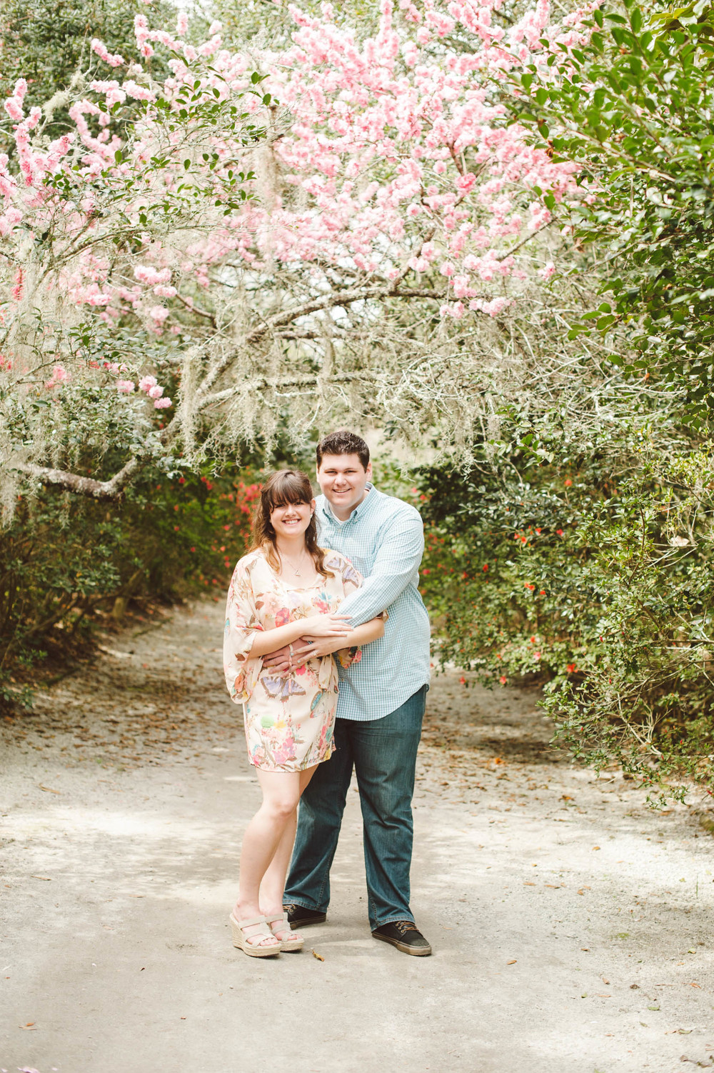 Charleston engagement photographer captures couple under spanish moss at Magnolia Plantation and Gardens engagement session