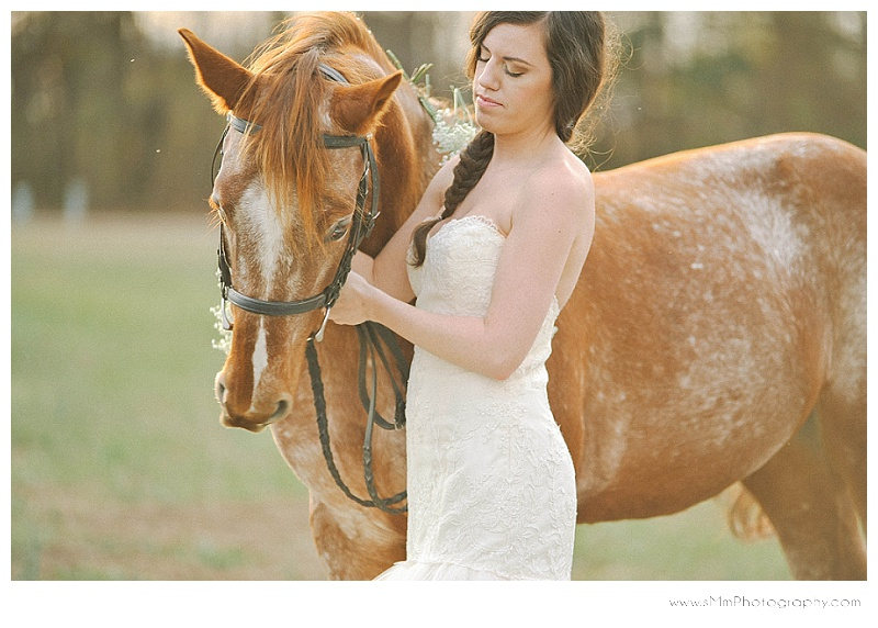 charlotte bridal portraits with horse