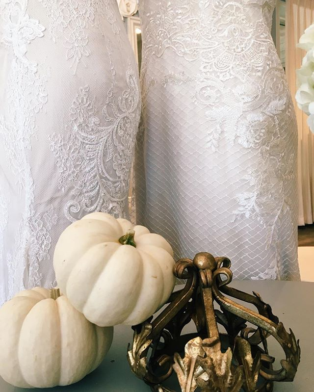 Celebrating the first day of Fall with our champagne colored lovelies by @kellyfaetanini & some pumpkin spice latte. 🍂 #happyfirstdayoffall #champagneweddingdress #laceandbeading #beunique #beyou #laceandbustlebridal #bridaltrunkshow #mustsee