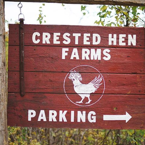 Crested Hen Farms