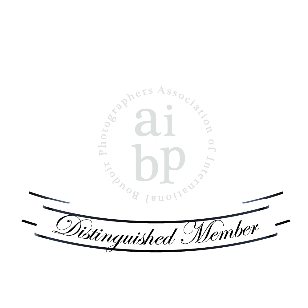 aibp-2017-vector-bw.png