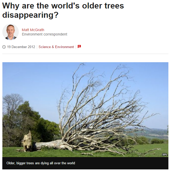 'Why are the world's older trees disappearing?' BBC News, 19 Dec 2012 BBC