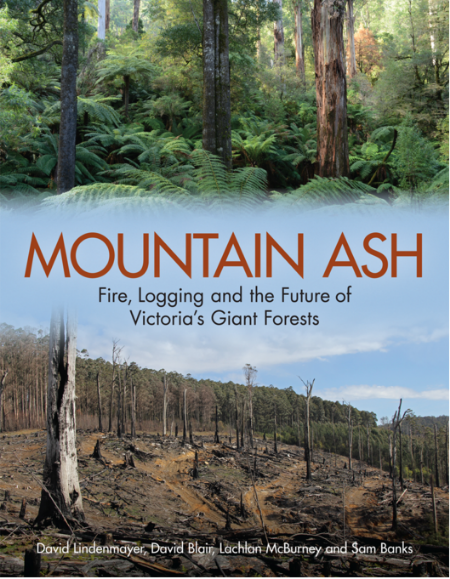 With spectacular images of the post-fire environment, 'Mountain Ash' gives insight into ecological dynamics following the 2009 wildfires in the Victorian Central Highlands.