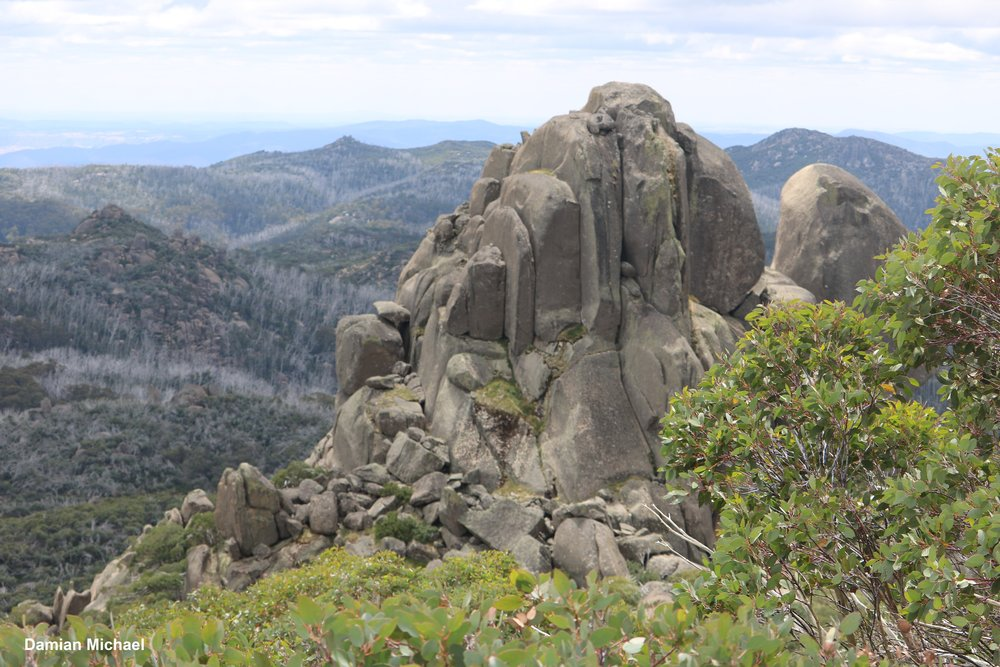 View across Mount Buffalo from the Cathedral - Hump summit. The large granite tors are popular with bushwalkers and rock climbers.