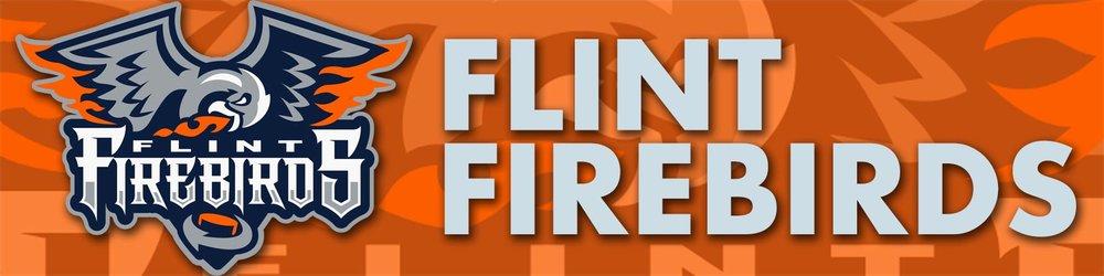 Flint-Banner.jpg