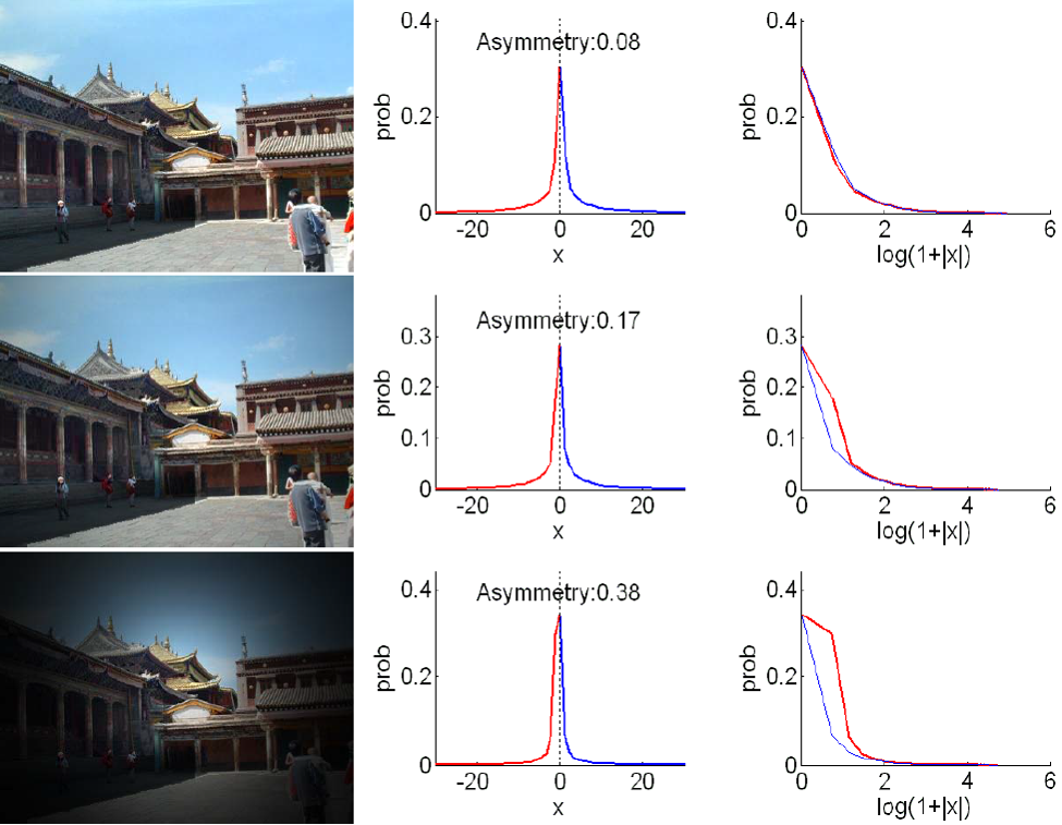 Single-image vignetting correction from gradient distribution symmetries