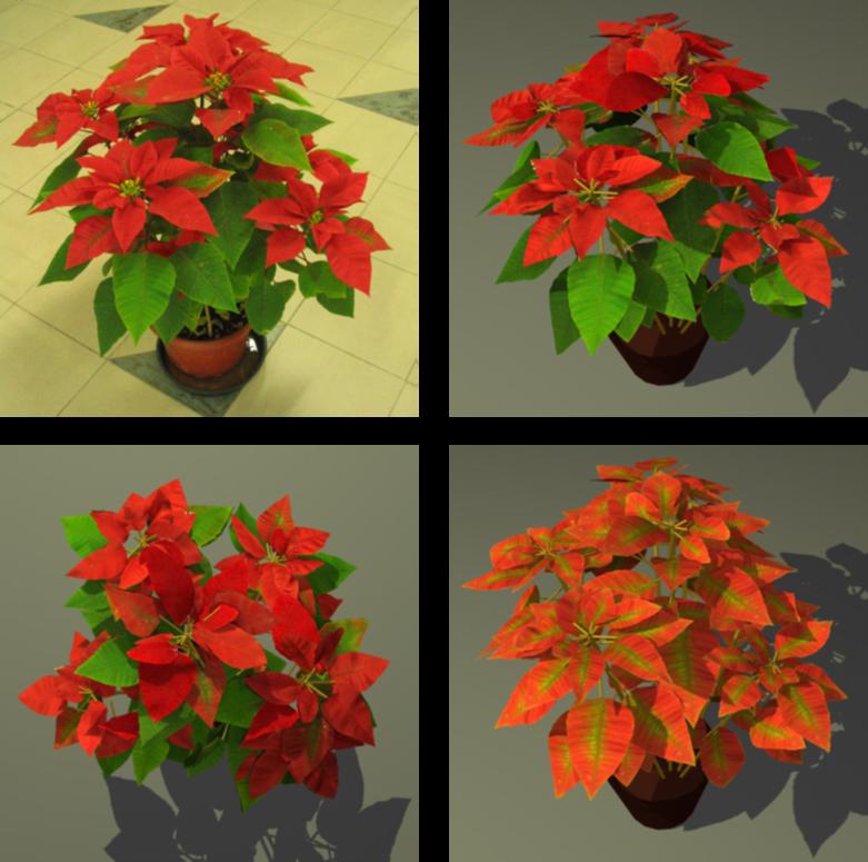 Image-based plant modeling