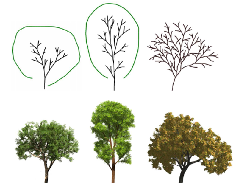 Sketch-based tree modeling using Markov Random Field