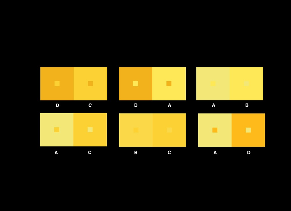 HORIZONTAL COLOR SCHEME IOTERS 54.jpg