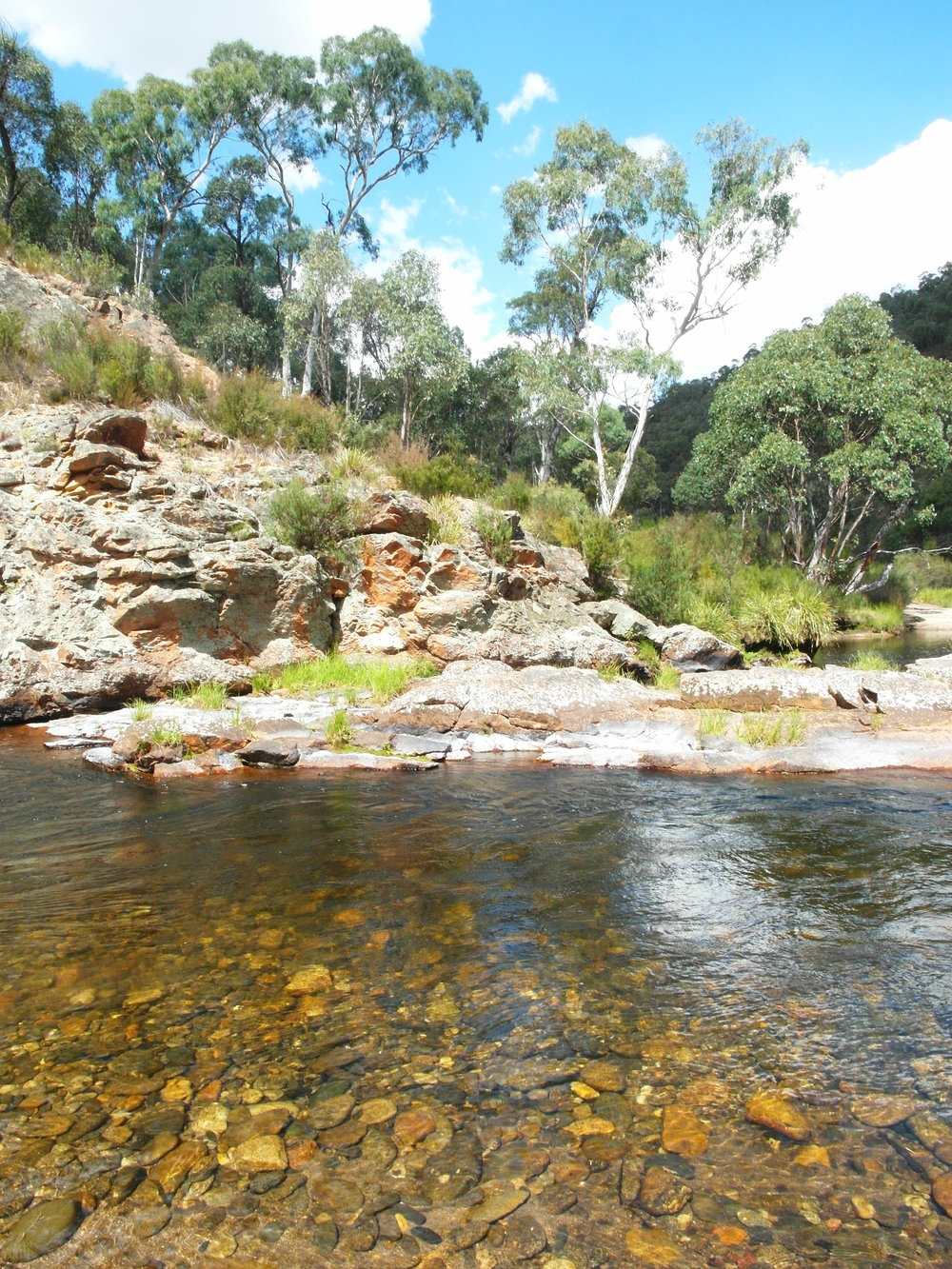 Our favorite swimming spot in the Mitta Mitta river.