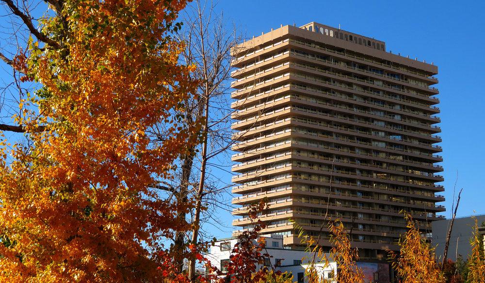 Arlington Towers_opt.jpg