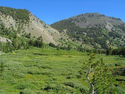 washoe county land development code