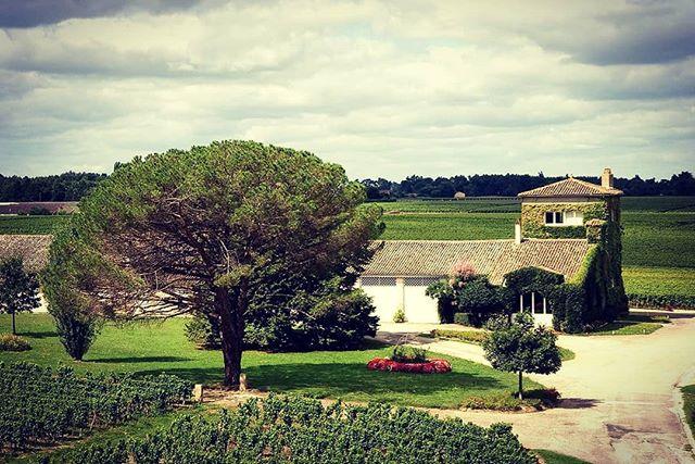 Château Rieussec Premier Cru Classé  Sauternes . . . . . . . . . . #leplonque #plonqueparty #excellence #vineyards #winery #winelover #winegeek #wineclub #member #wine #winetravel #sweetness #sweetwine #winebar #winebottle #wineday #mondaymotivation #winephotography #instamoment #instawine #cheers #bordeauxwine #bordeaux #sauternes #sydney #sydney_insta #enjoy #shoponline