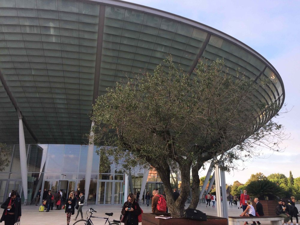 Riminiseminar2.jpg