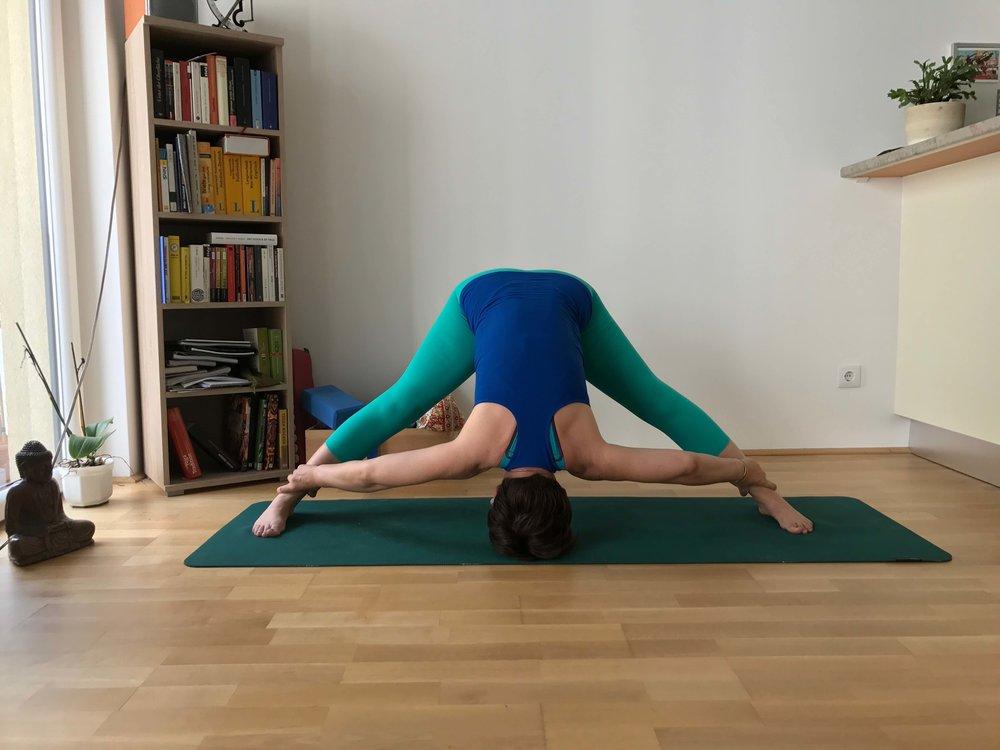 'PrasaritaPadottanasana #disawistories #yoga #meineyogazeit.jpg