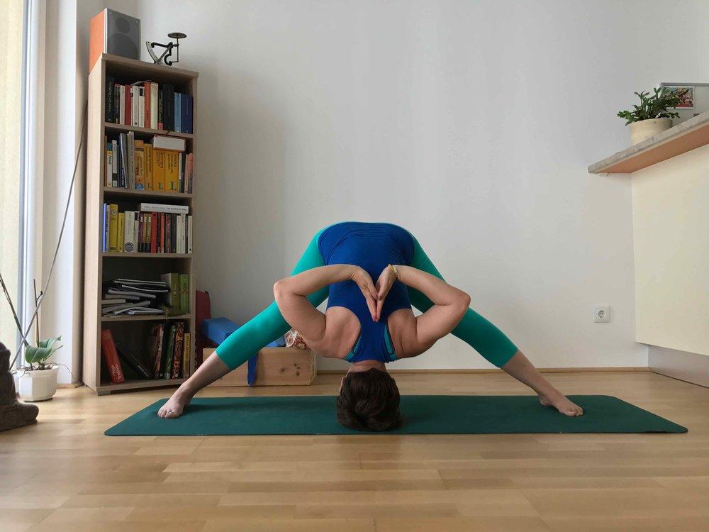 #2PrasaritaPadottanasana #disawistories #yoga #meineyogazeit.jpg
