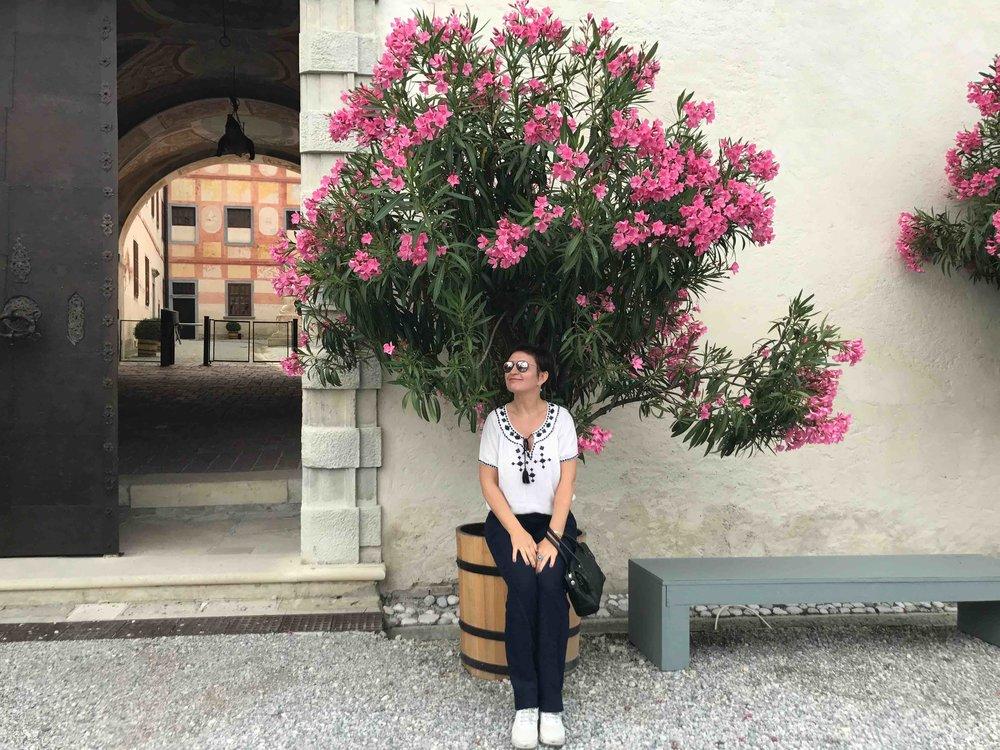 #SchlossForchtenstein #esterhazy #führung #oleander.jpg