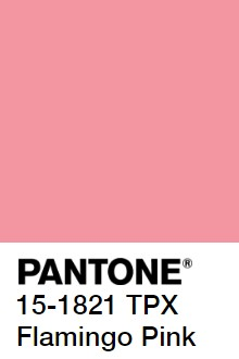 colour for my personal brand
