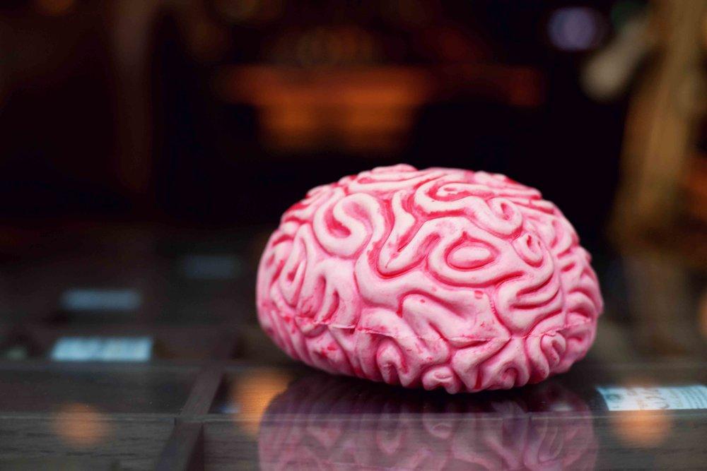 BrainTrainMe-50.jpg
