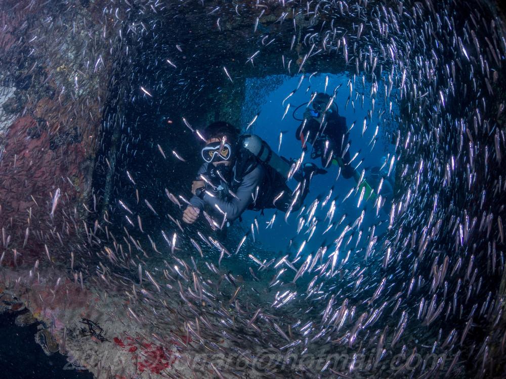 Jonatan Sanchez Wreck diving