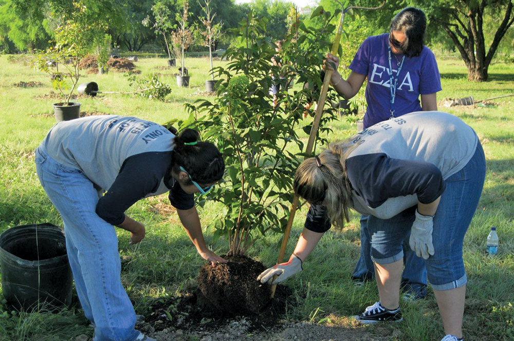 PRB0313_Irvin_Tree Planting1.jpg