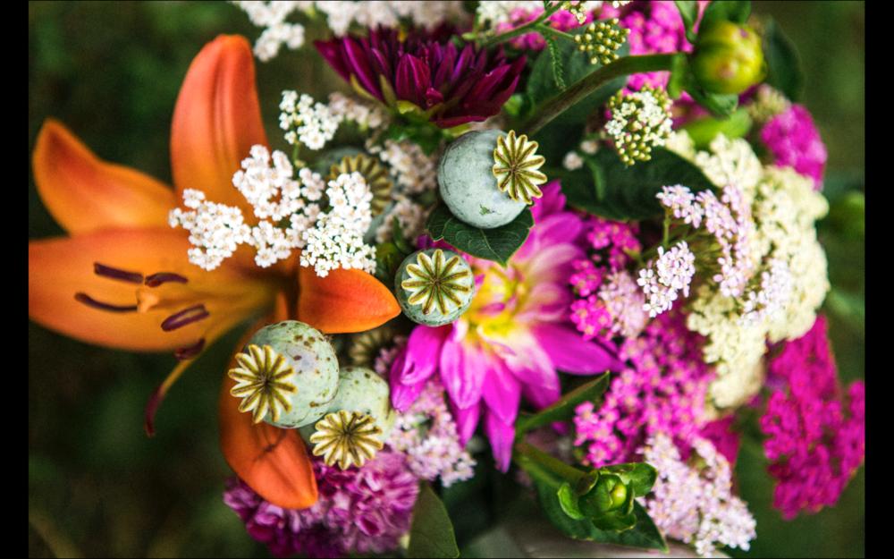 wildflowerfarmbouquetpoppypodpink