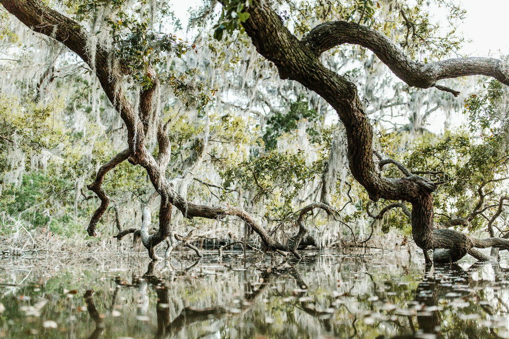 outdoor backpacking adventure photography- Cumberland Island National Seashore 2017 040.jpg