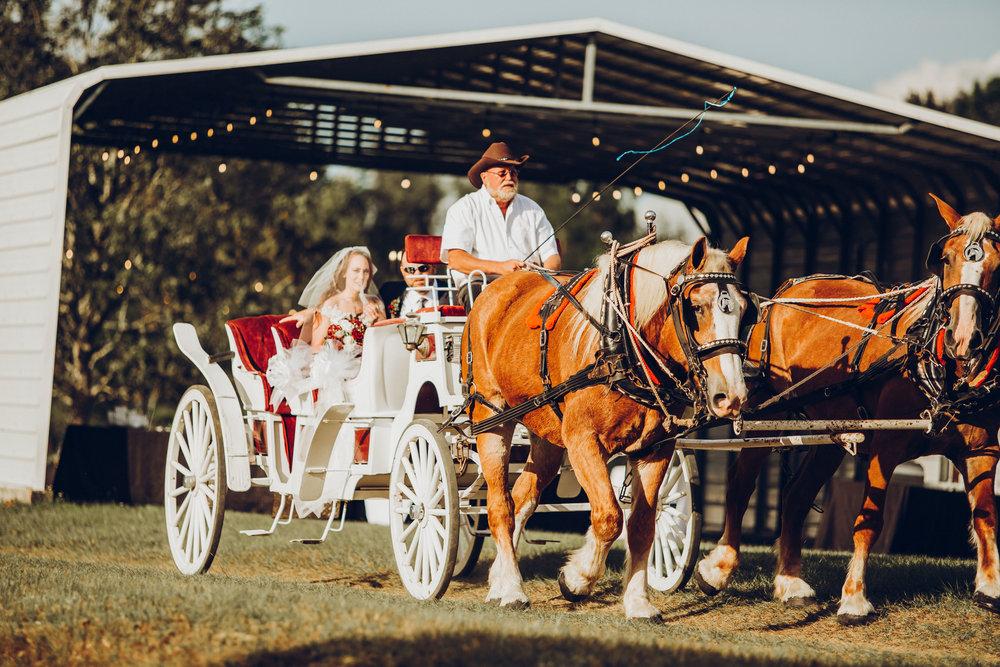 4. Ceremony - Romantic Backyard Farm Wedding - Lauren+Daniel 128.jpg