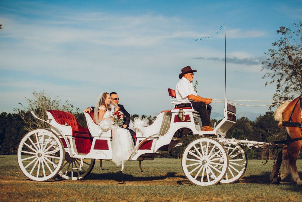 4. Ceremony - Romantic Backyard Farm Wedding - Lauren+Daniel 138.jpg