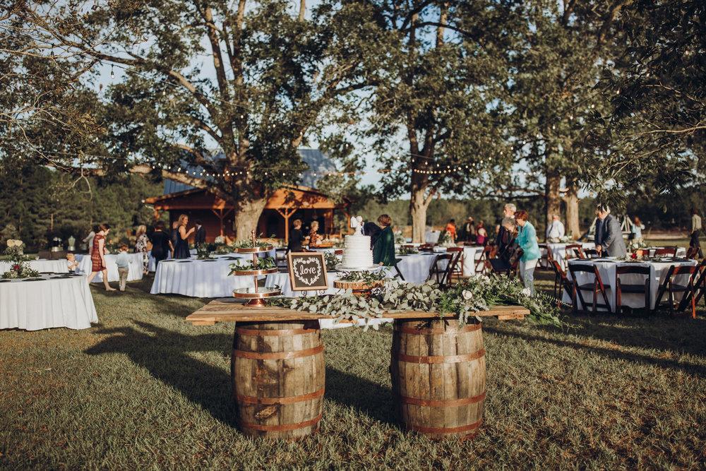 8. Reception -  Romantic Backyard Farm Wedding - Lauren+Daniel 015.jpg
