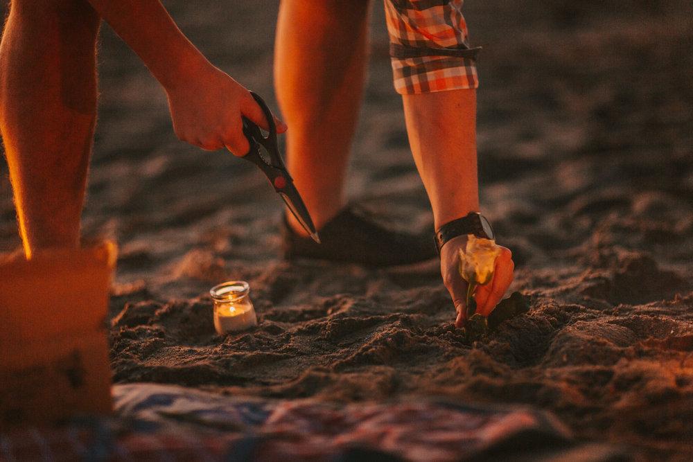 Romantic_Sunrise_Cherie_Down_Park_Wedding_Proposal - Jesse+Tonya_004.jpg