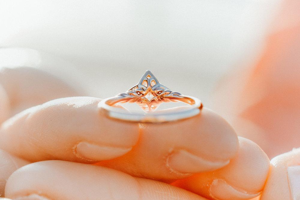 Romantic_Sunrise_Cherie_Down_Park_Wedding_Proposal - Jesse+Tonya_094.jpg