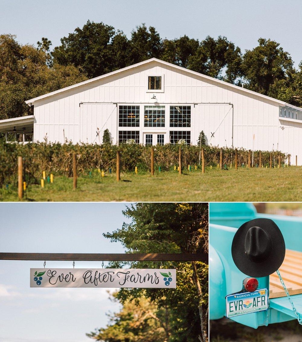 Rustic Sunflower & Blueberry Barn Wedding- Ever After Farms - Allie & NickBlog 2.jpg