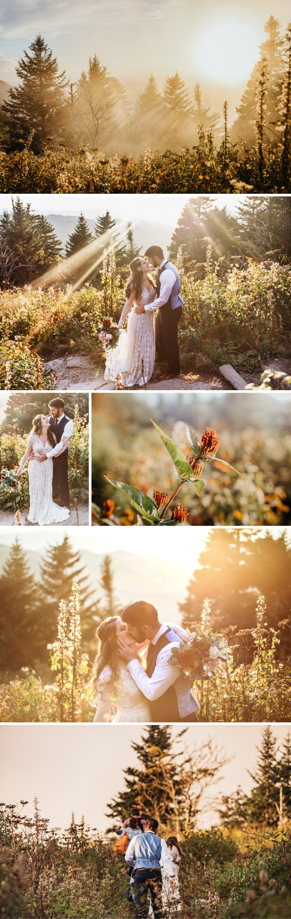 Great Smoky Mountain National Park Elopement- Cole + Rachel- Photographer Shaina DeCiryan-11.20184.jpg