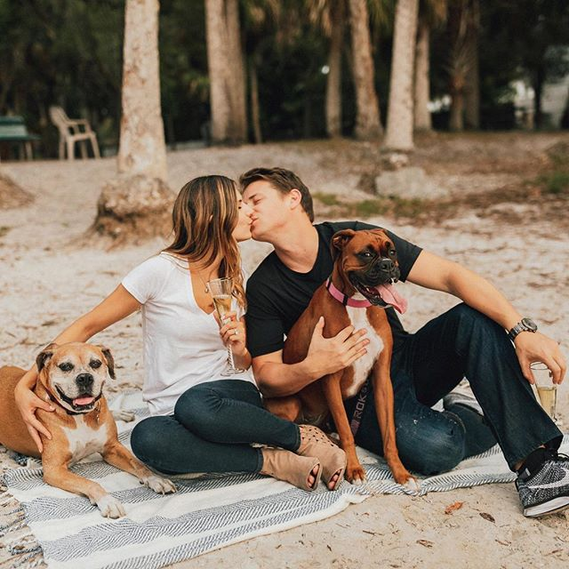 Felicidades to these two gulf coast lovebirds Alanna + Anthony who are tying the knot today! So excited to see what this beautiful day will bring! . . . . #longboatkeywedding #sarasotawedding #travelwedding #travelweddingphotographer #doglovers #boxersofinstagram #engagementphotos #engaged #shainadeciryanphotography #junebugweddings