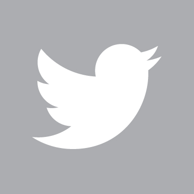 Copy of Copy of Twitter