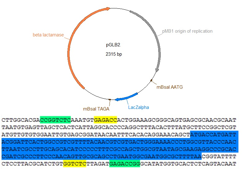 This plasmid map shows the features of pGLB2.  pGLB2 is a pUC19 derivative with a redesigned LacZalpha, no BsaI sites in the backbone, and no multiple cloning site.  It incorporates the methylation sensitive (light green) and insensitive (yellow) sites to allow hierarchical golden gate assembly with a single restriction enzyme.