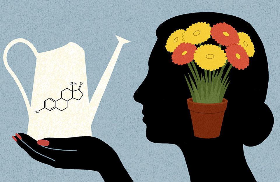 Can Women Prevent Alzheimer's with Estrogen?