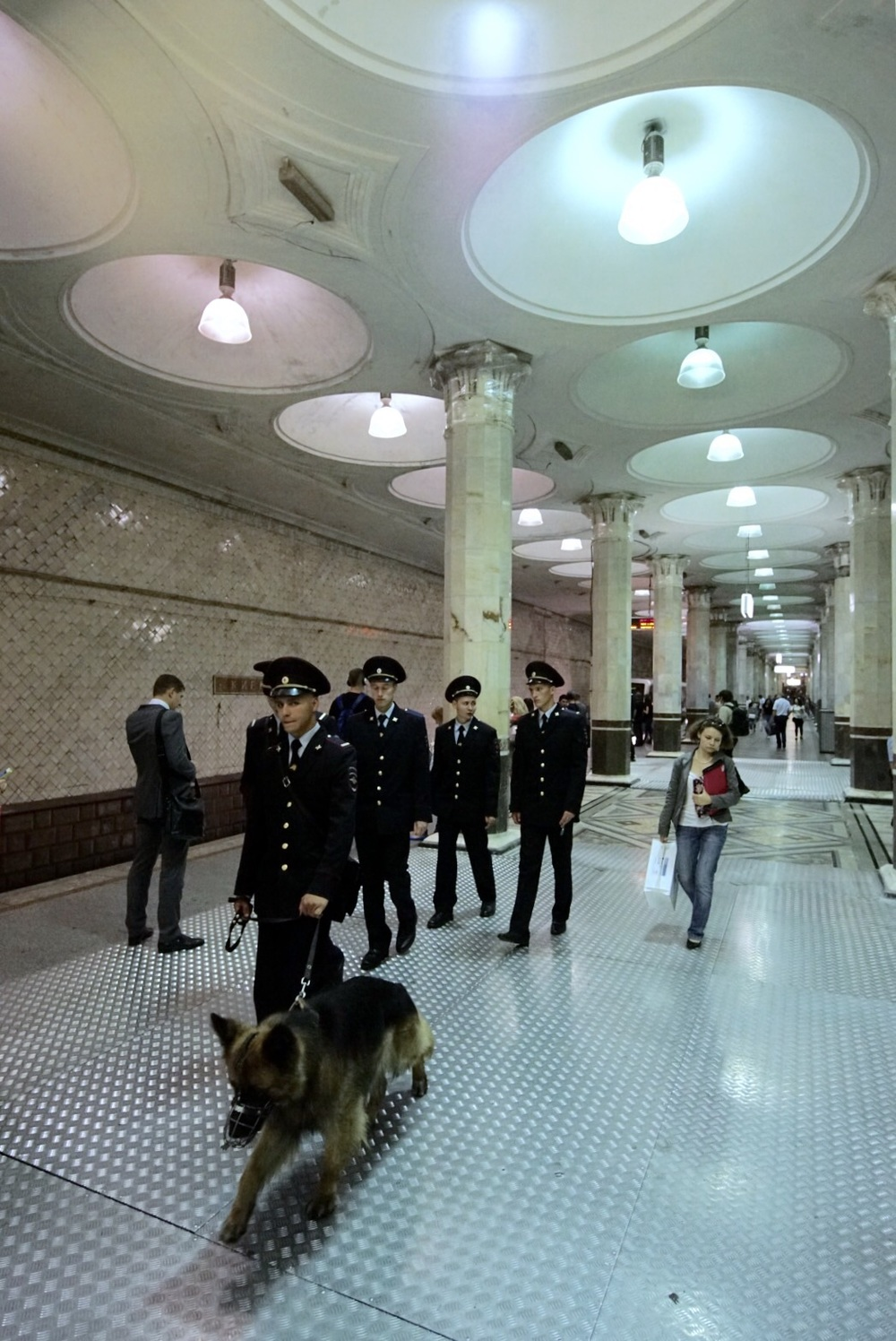 Polícia e cão farejador cuidam da segurança das estações
