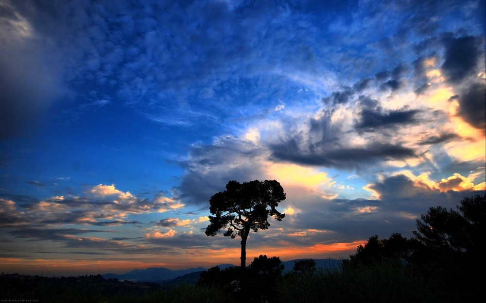 sunset_clouds_nature_trees_silhouette_skyscapes_1920x1200_wallpaper_Wallpaper_2560x1600_www.wallpaperswa.com.jpg